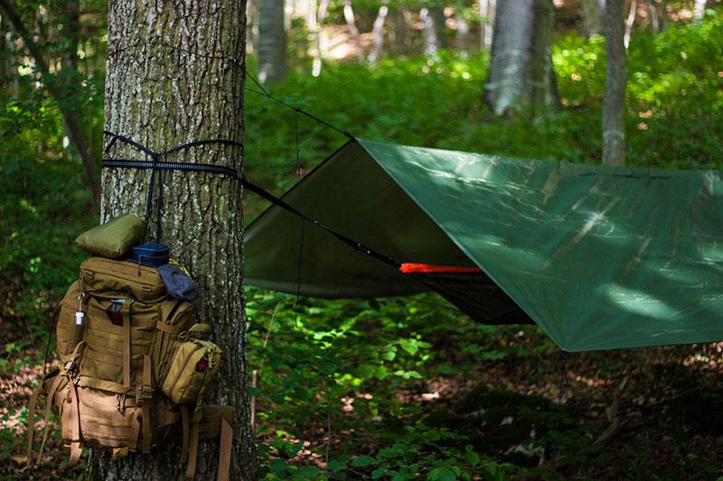 Bushcraft Survival Beginners